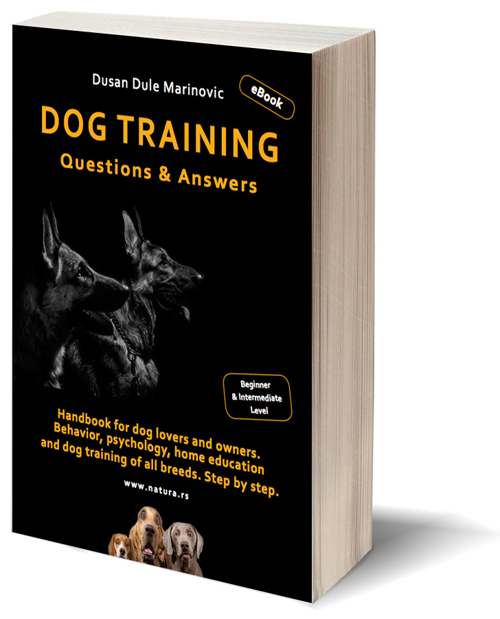 Dog Training 3D Book Cover