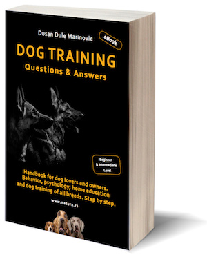 NEW eBOOK IN ENGLISH: Dog training - Questions & Answers. Handbook for dog lovers and owners. Behavior, psychology, home education and dog training of all breeds. Beginner & Intermediate Level. Format A5, 12 chapters, 518 pages, 237 photography, drawings and tables. Author: Dusan Dule Marinovic. Translation: Angela Kanacki. Belgrade, April 2018.