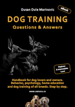 English Dog Training eBook mala